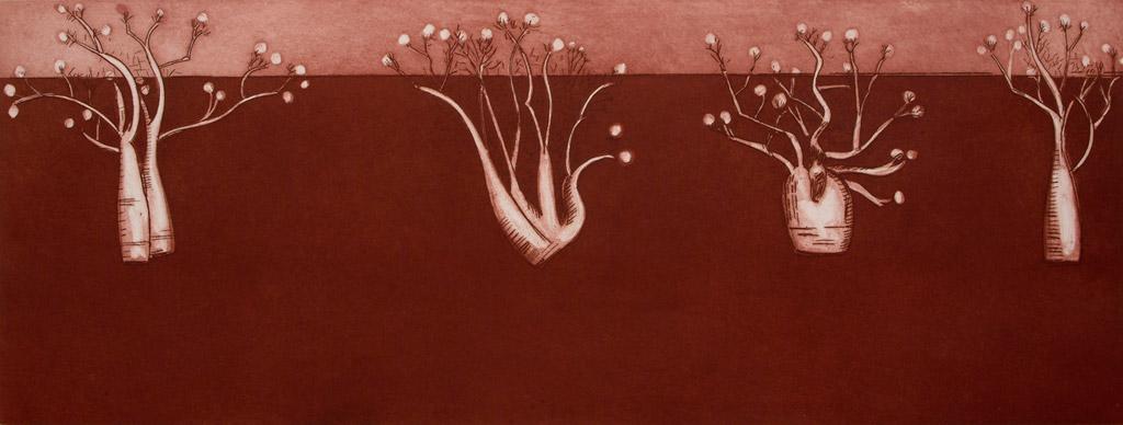 Desert Boabs - Red