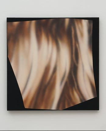 Magazine Painting (Hair)   2012 , Oil on dyed linen. 38 x 38 in. (96.5 x 96.5 cm).
