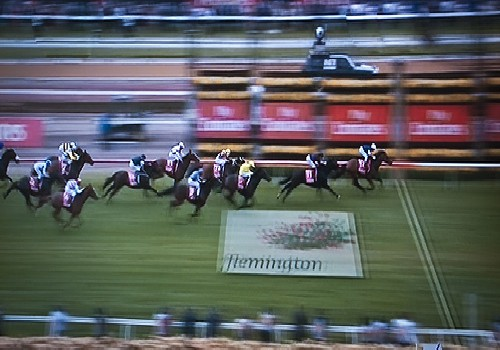 No chance.  Green Moon wins the 2012 Melbourne Cup  by SilverStack/ cc