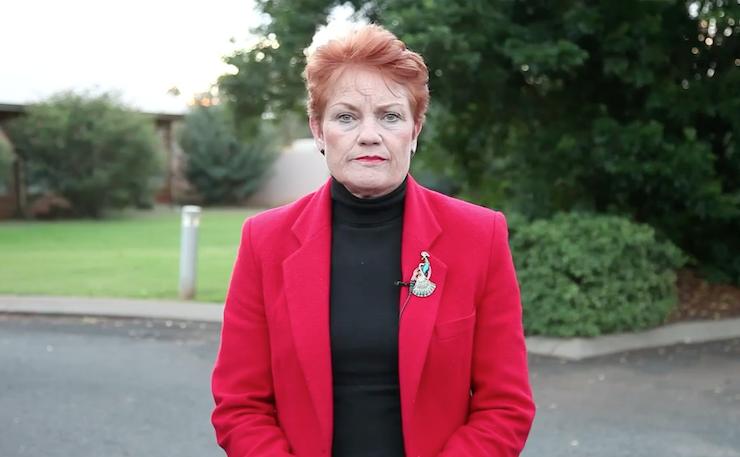 Pauline Hanson in a recent video.