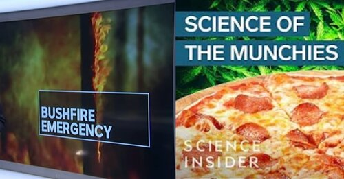 Screenshots from  ABC News  and  Science Insider