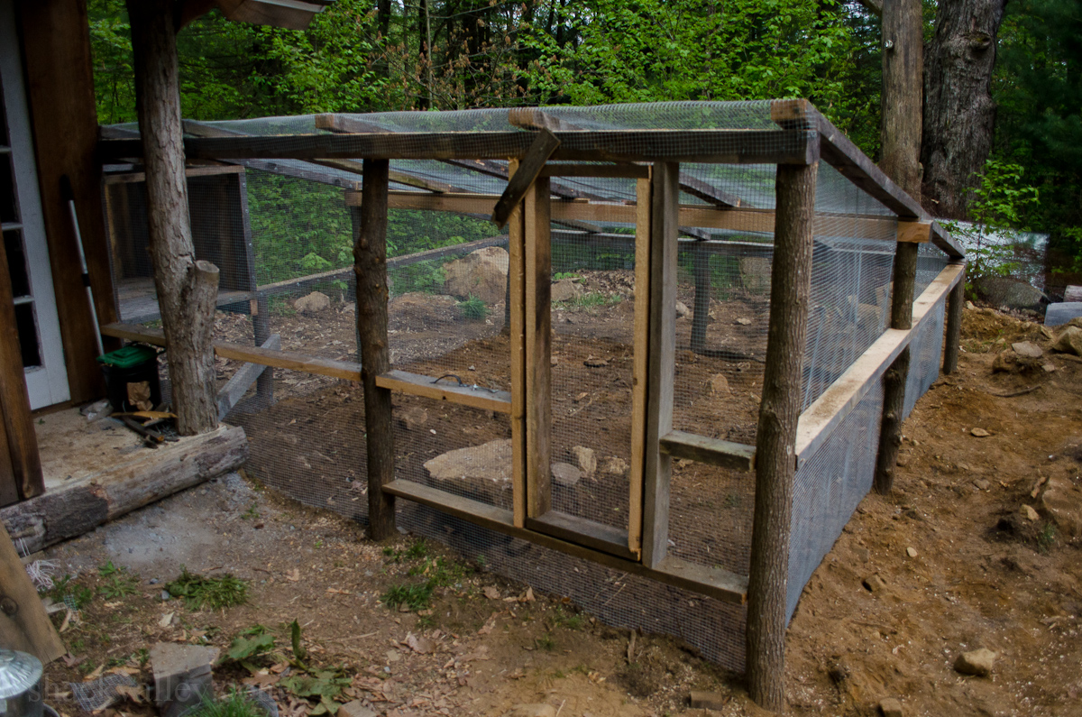 New Chicken Coop Run-7.jpg