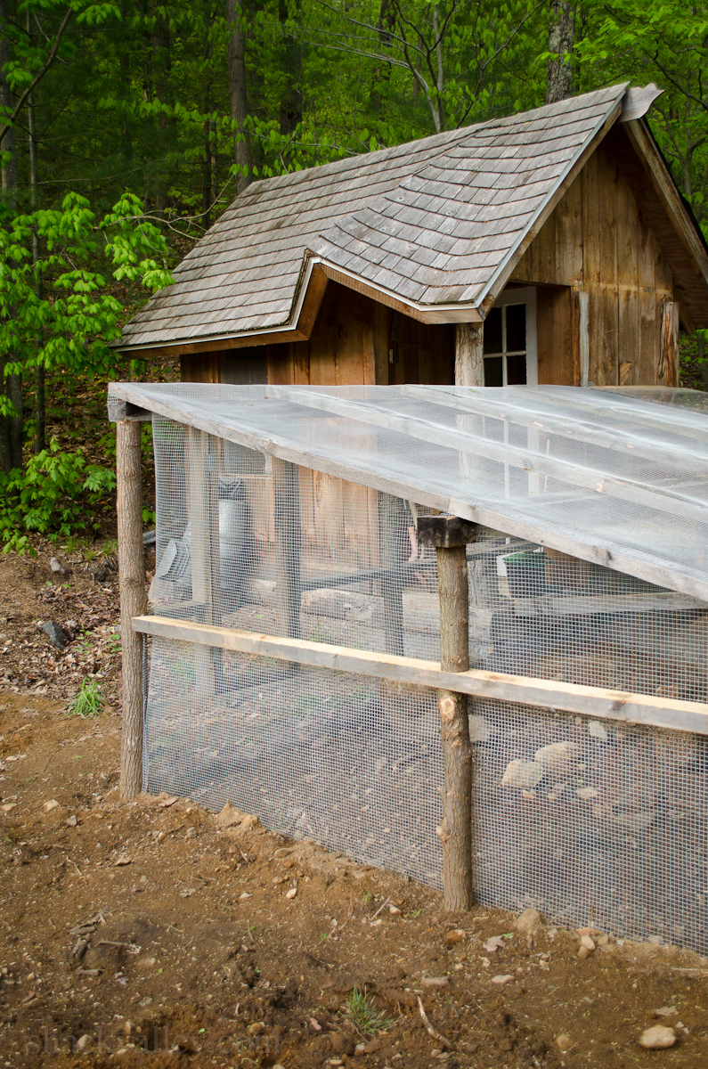 New Chicken Coop Run-4.jpg