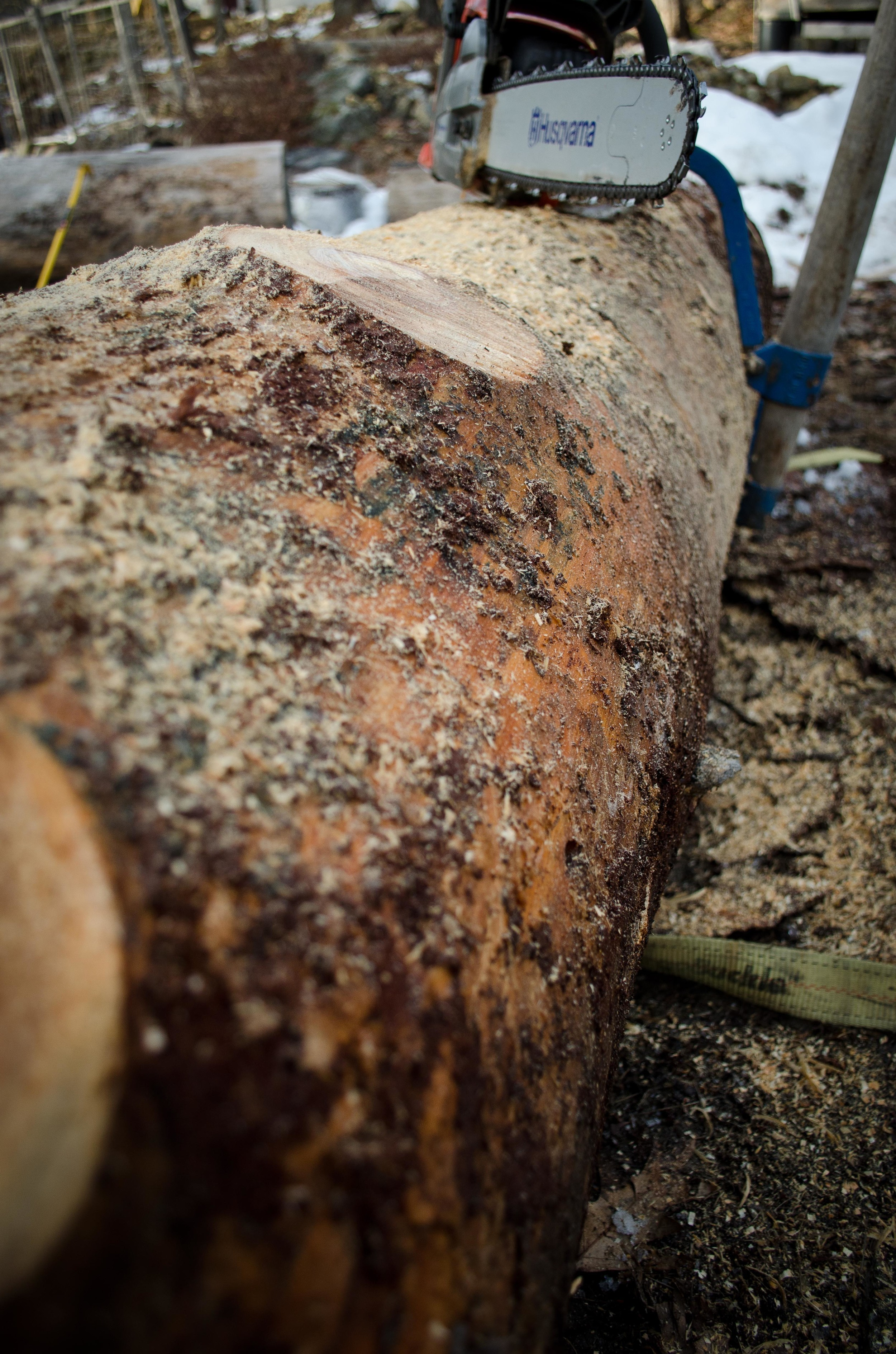 Log Prepped.jpg