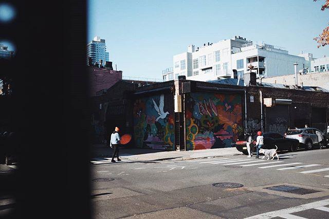 Some corner in Brooklyn 🚶🚶♀️🐾