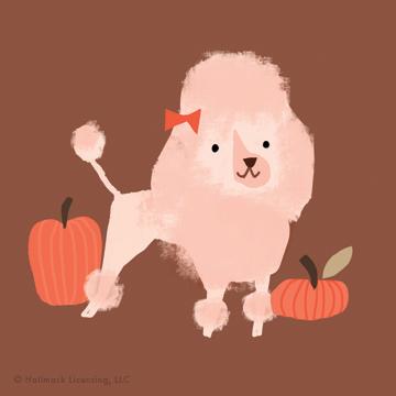 +IG-pumpkin3.jpg