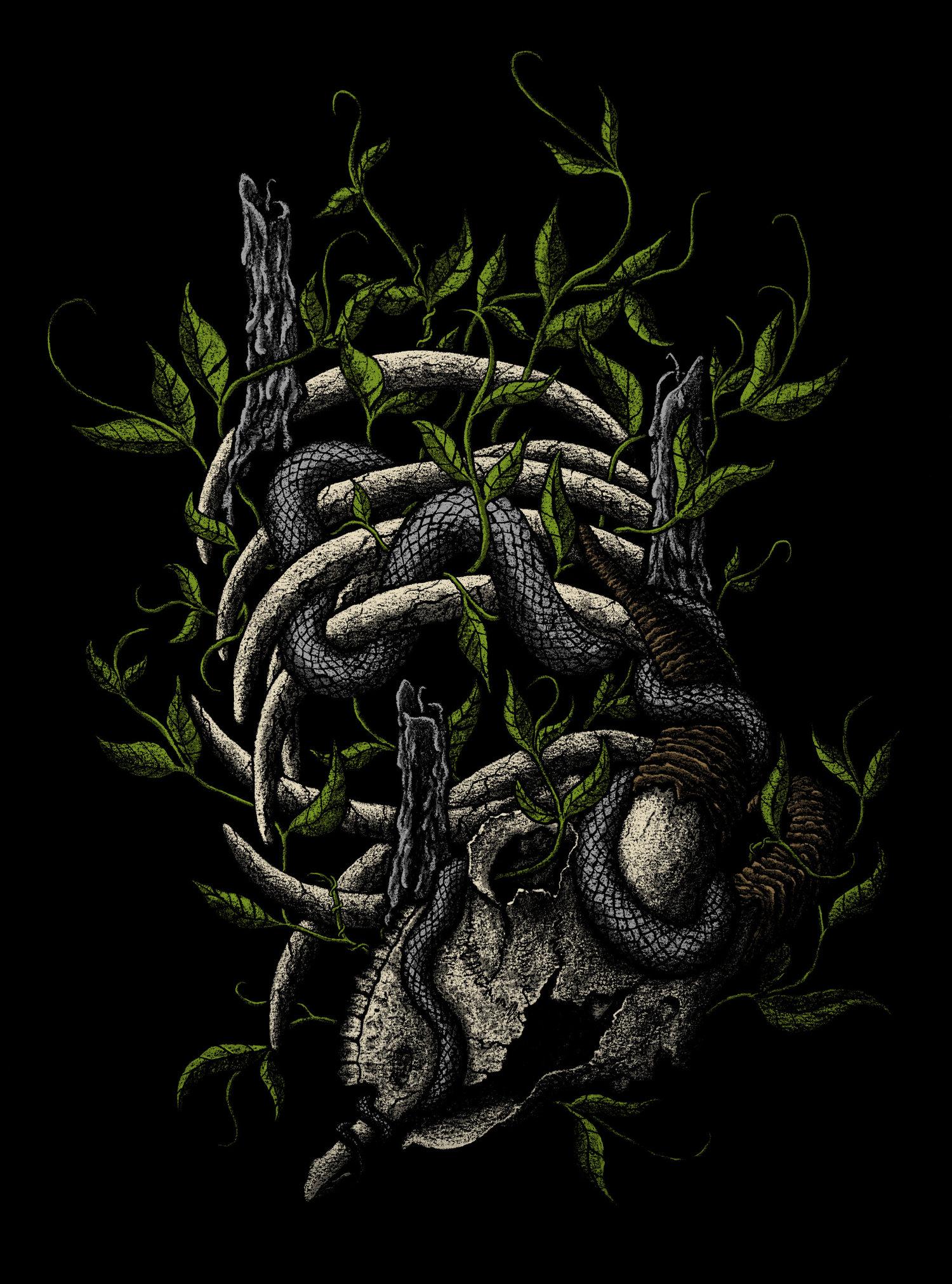 Blind+Worm's+Sting+color.jpg