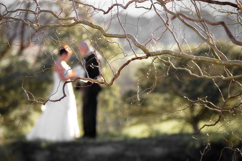 Weddings-007.jpg