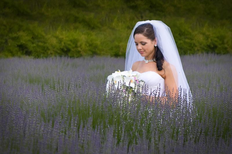 Weddings-008.jpg