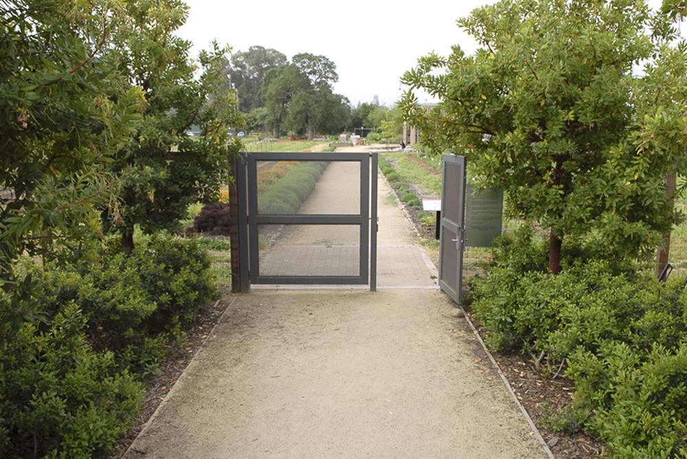 BTD Stanford-0467--R.jpg