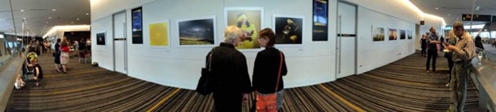 Visitors enjoy Alex Frayne's entry.jpg