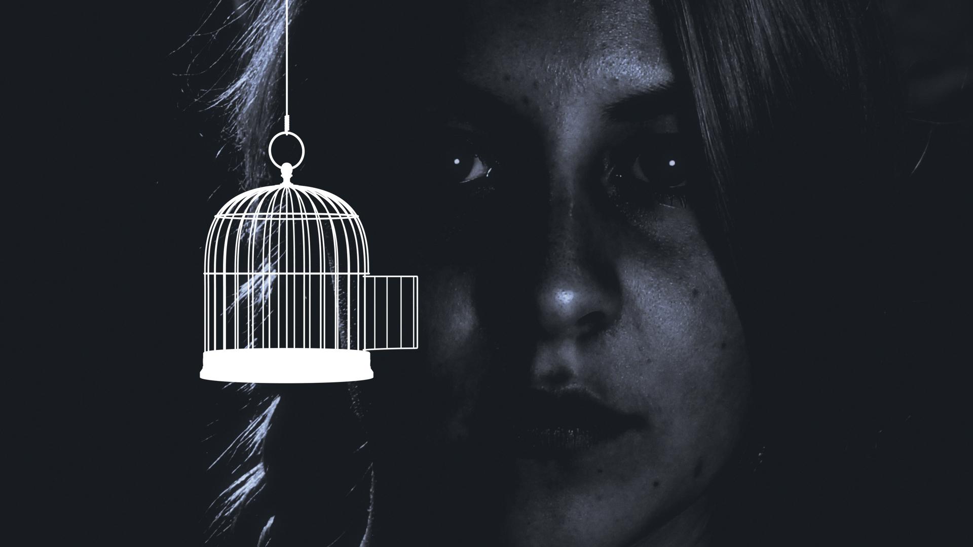 birdcage_spin_white (0-00-16-20).jpg