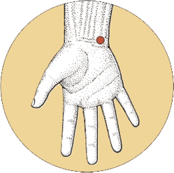 ht7 acupuncture point