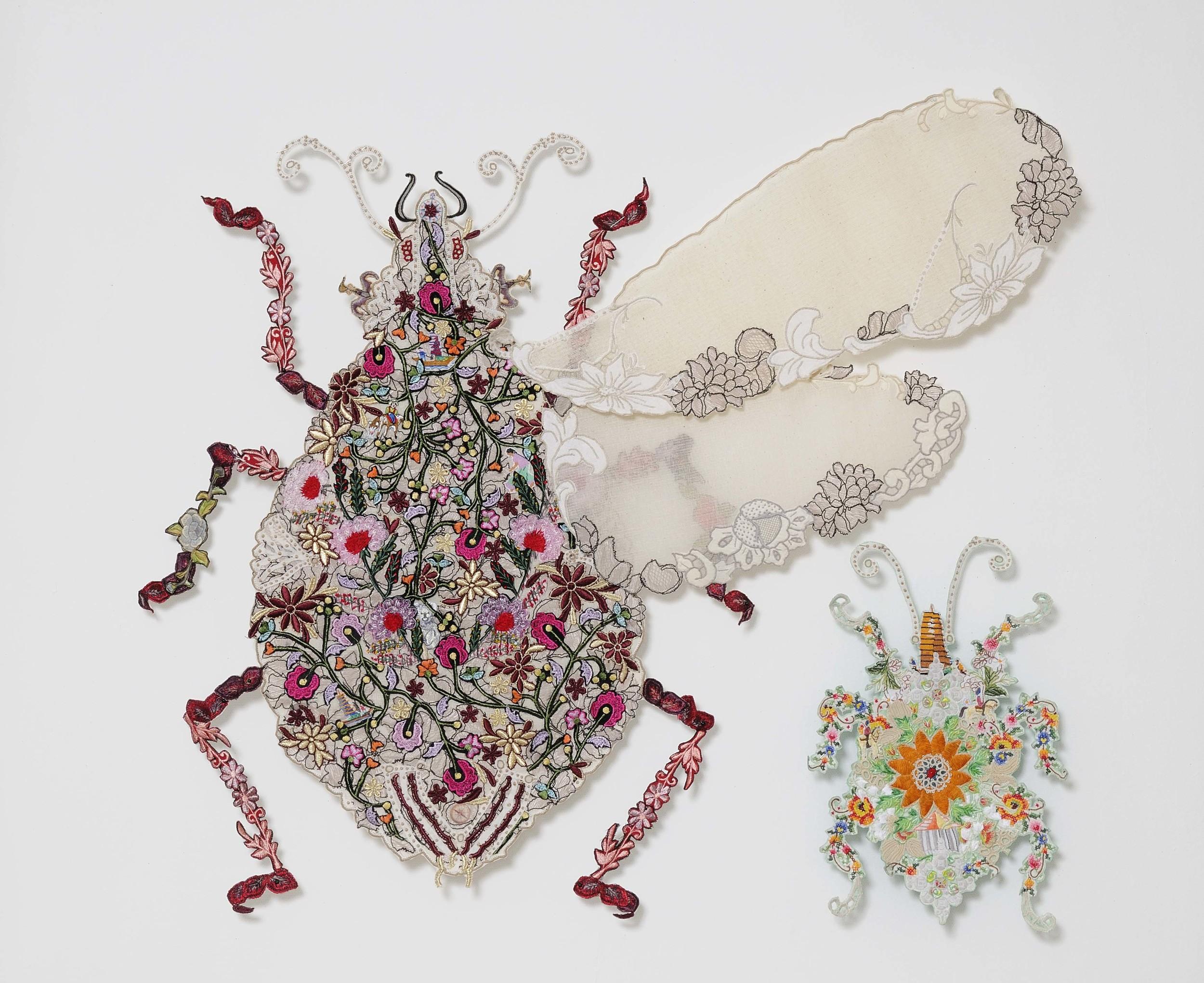 Copy of Travel Bugs 2009 (Aviatus hemipterai & Aviatus maladeus hemipterai)