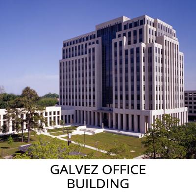 GALV-THUMB-T.jpg