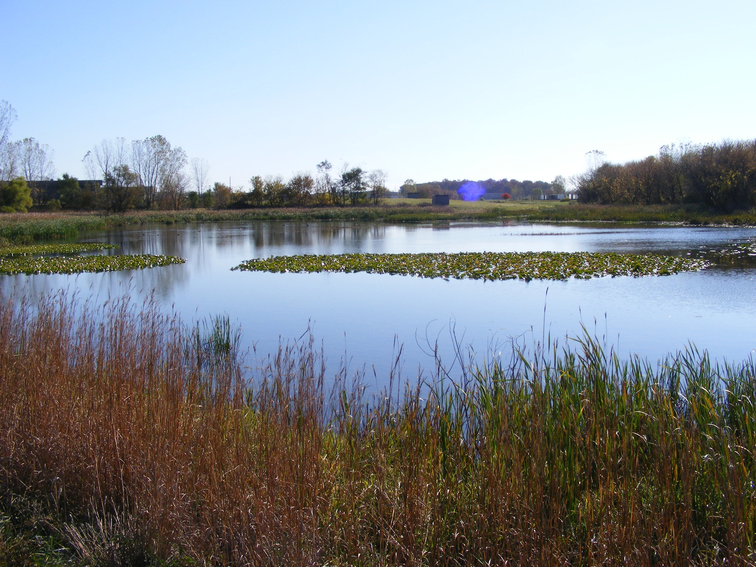 Carroll Creek Detention Pond