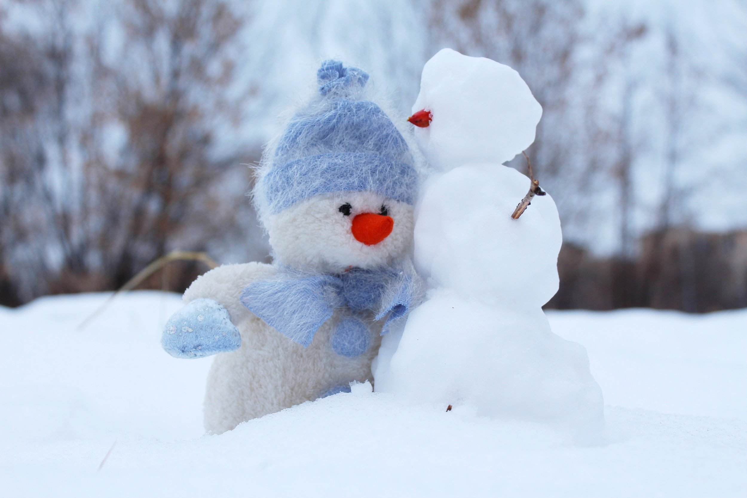christmas-cold-friends-snowman-snow.jpg