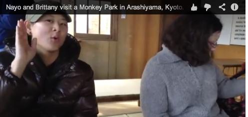 Nayo and Brittany visit a Monkey Park in Arashiyama, Kyoto.