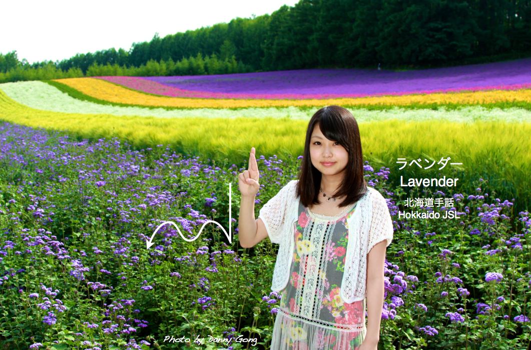 ラベンダー Lavender DeafJapan