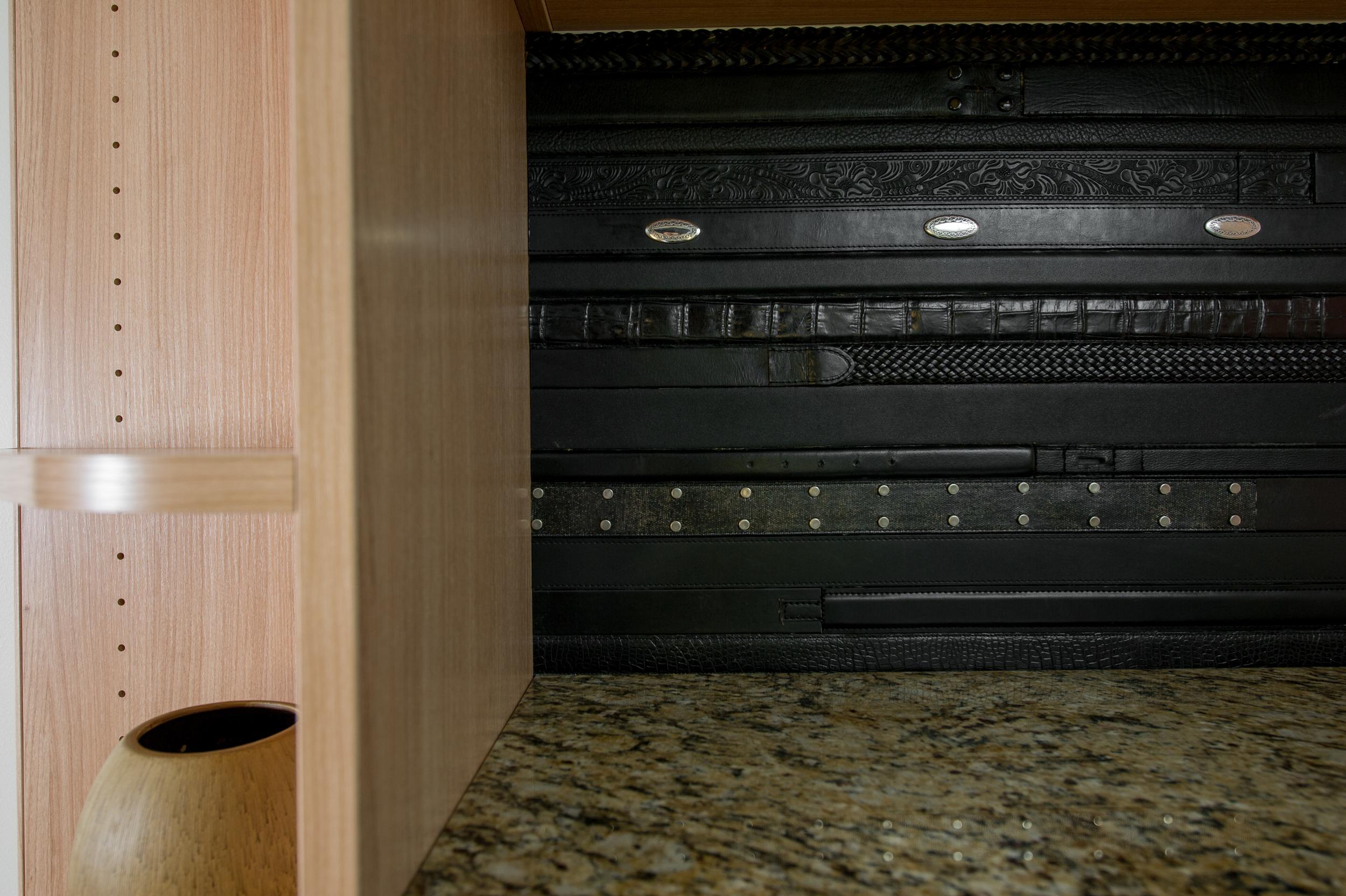 Phoenix - Black Belt panel (1).jpg