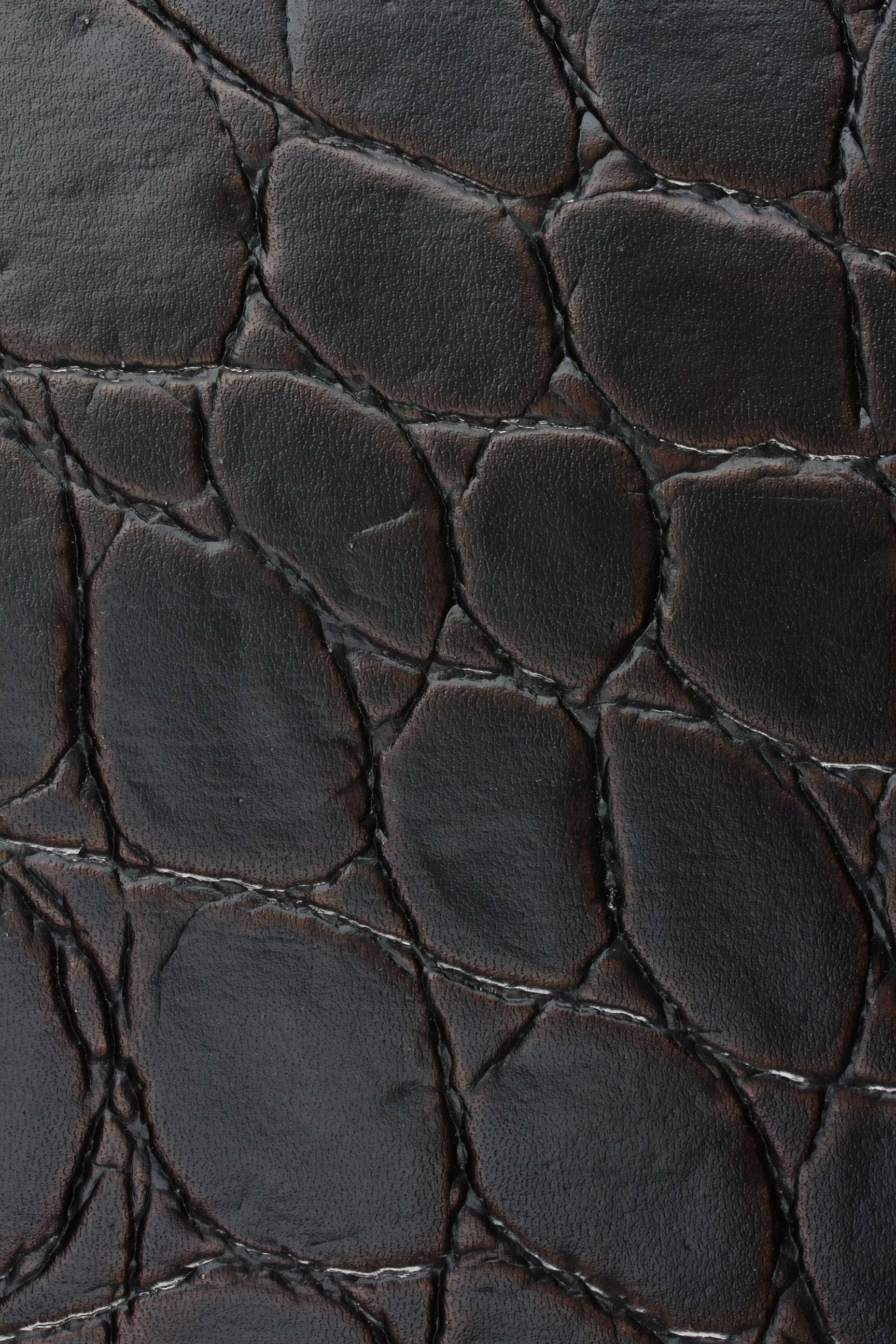 Jumbo Croc Bourbon (1).jpg