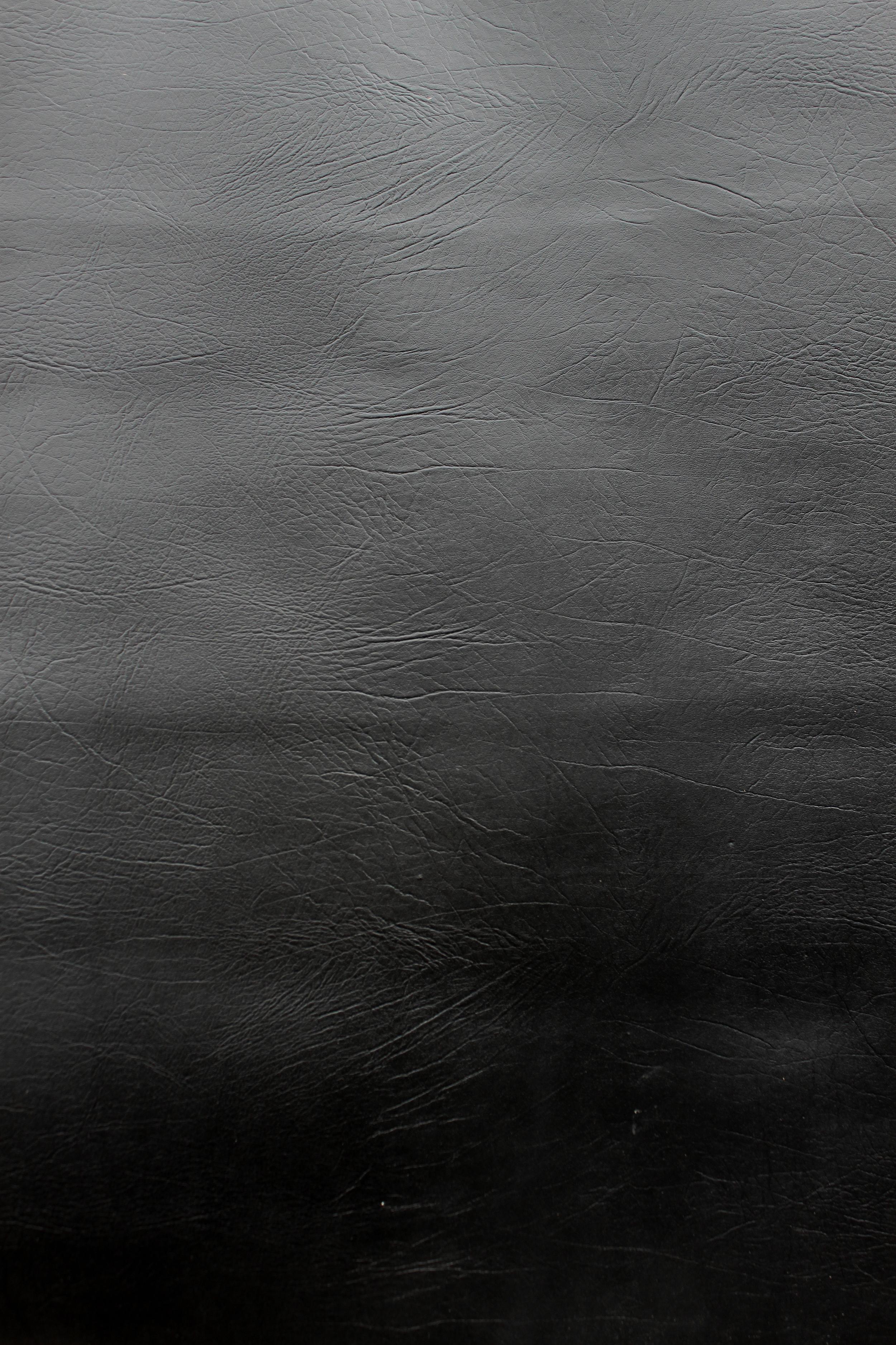 Coal Buffalo - Sheet size.jpg