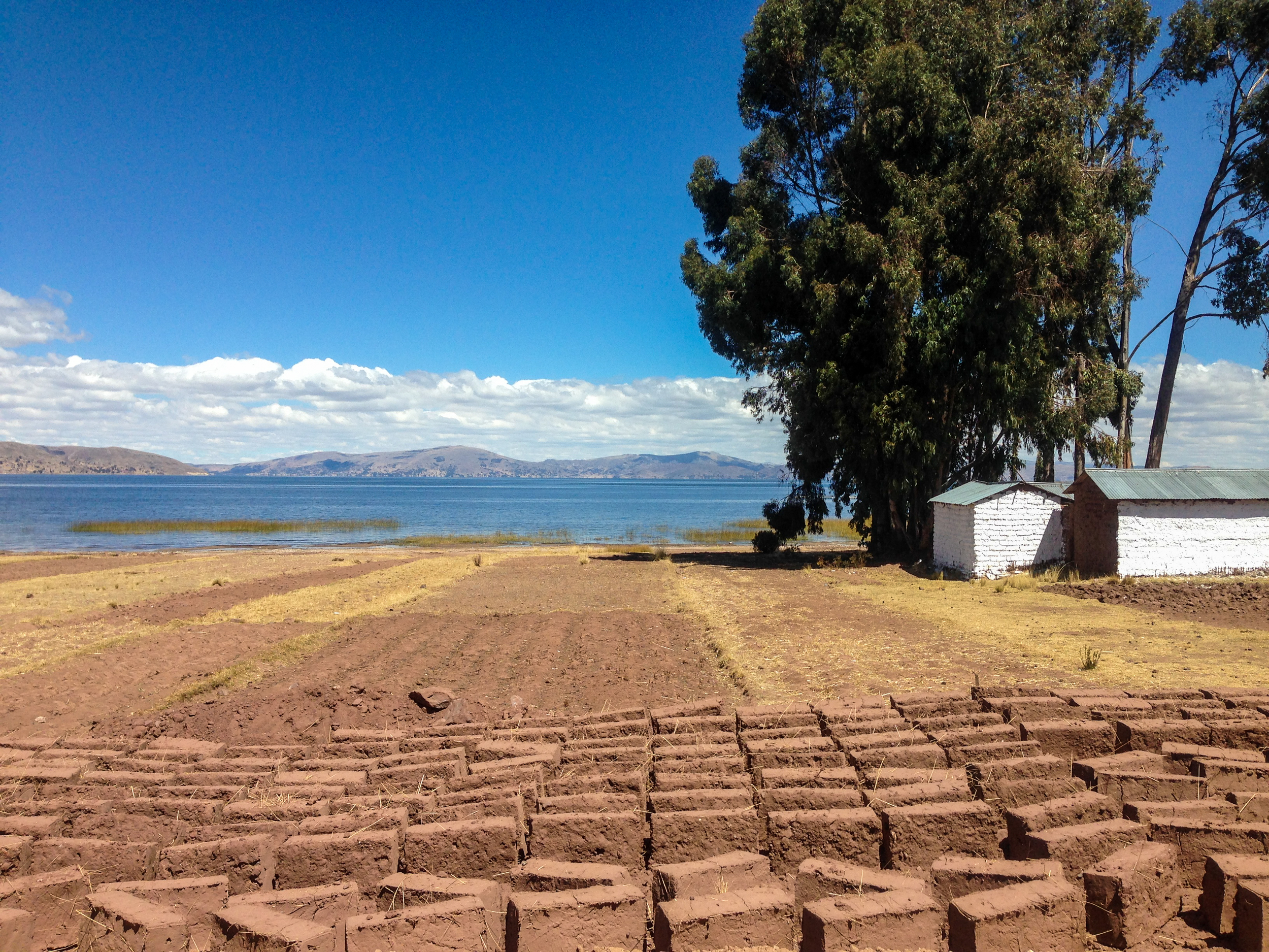 Adobe bricks being dried in the sun at one of the places we pulled over to let someone out after departing Capachicha.