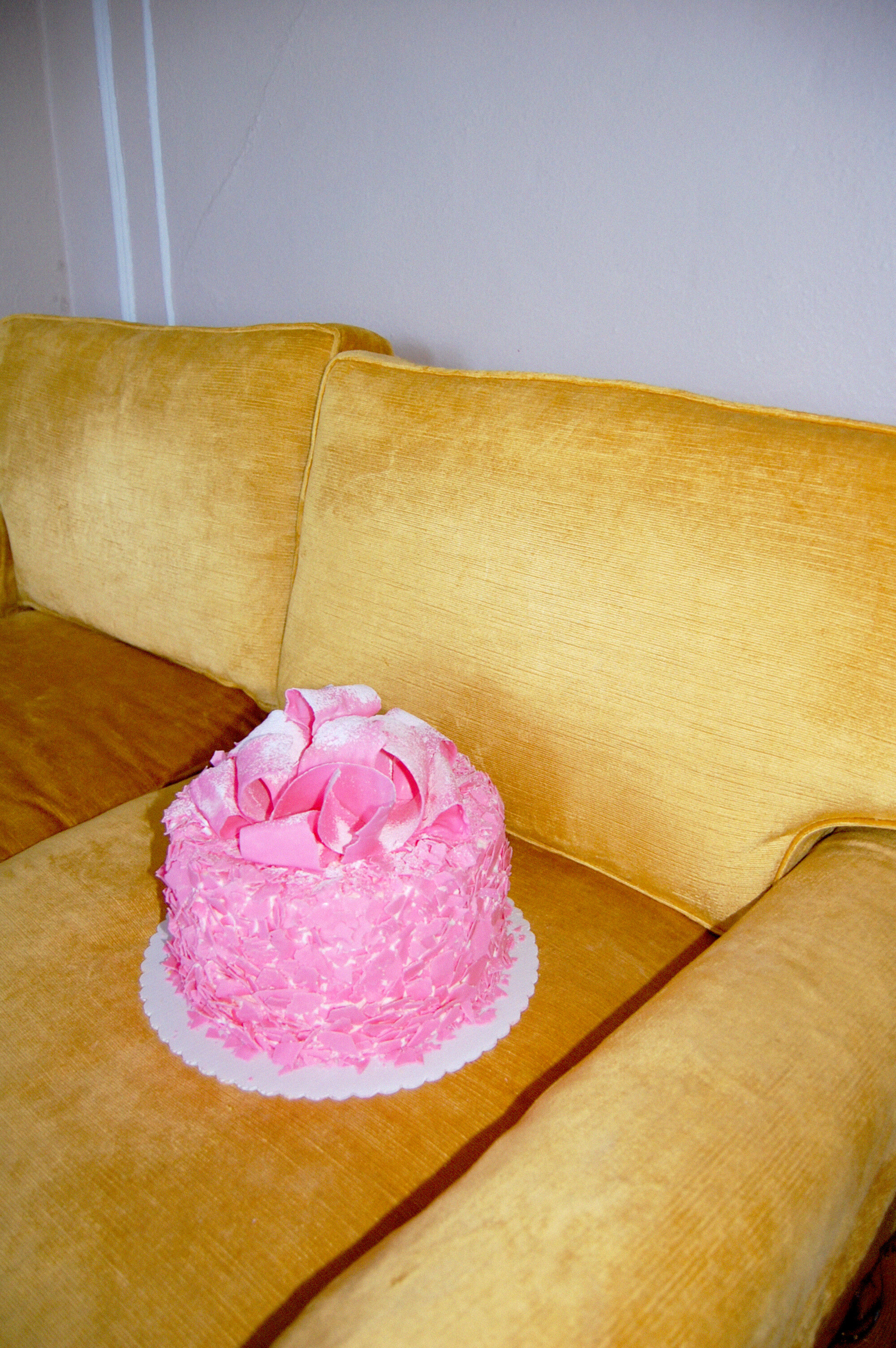 madonna inn cake .jpg