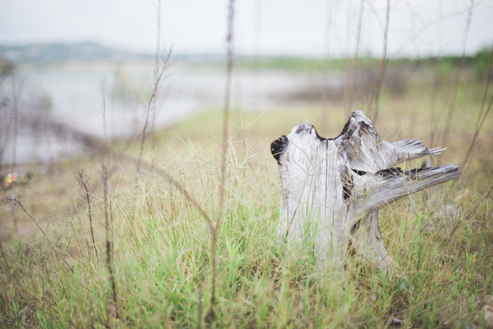 diana ascarrunz - lake travis - photography (17 of 27).jpg