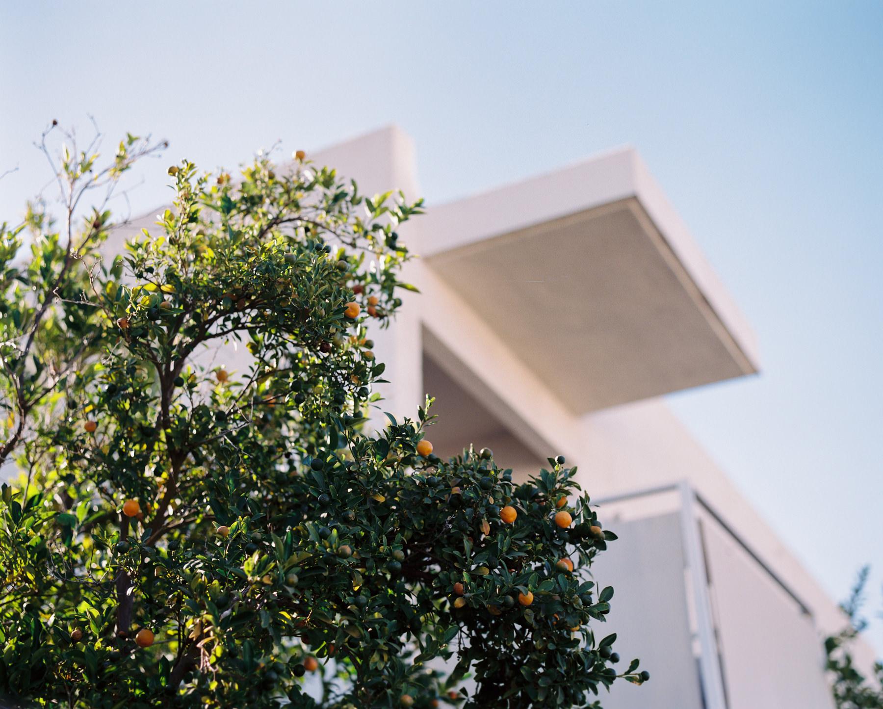 Palm Springs Joshua Tree Travel Film - Diana Ascarrunz Photography-61.jpg