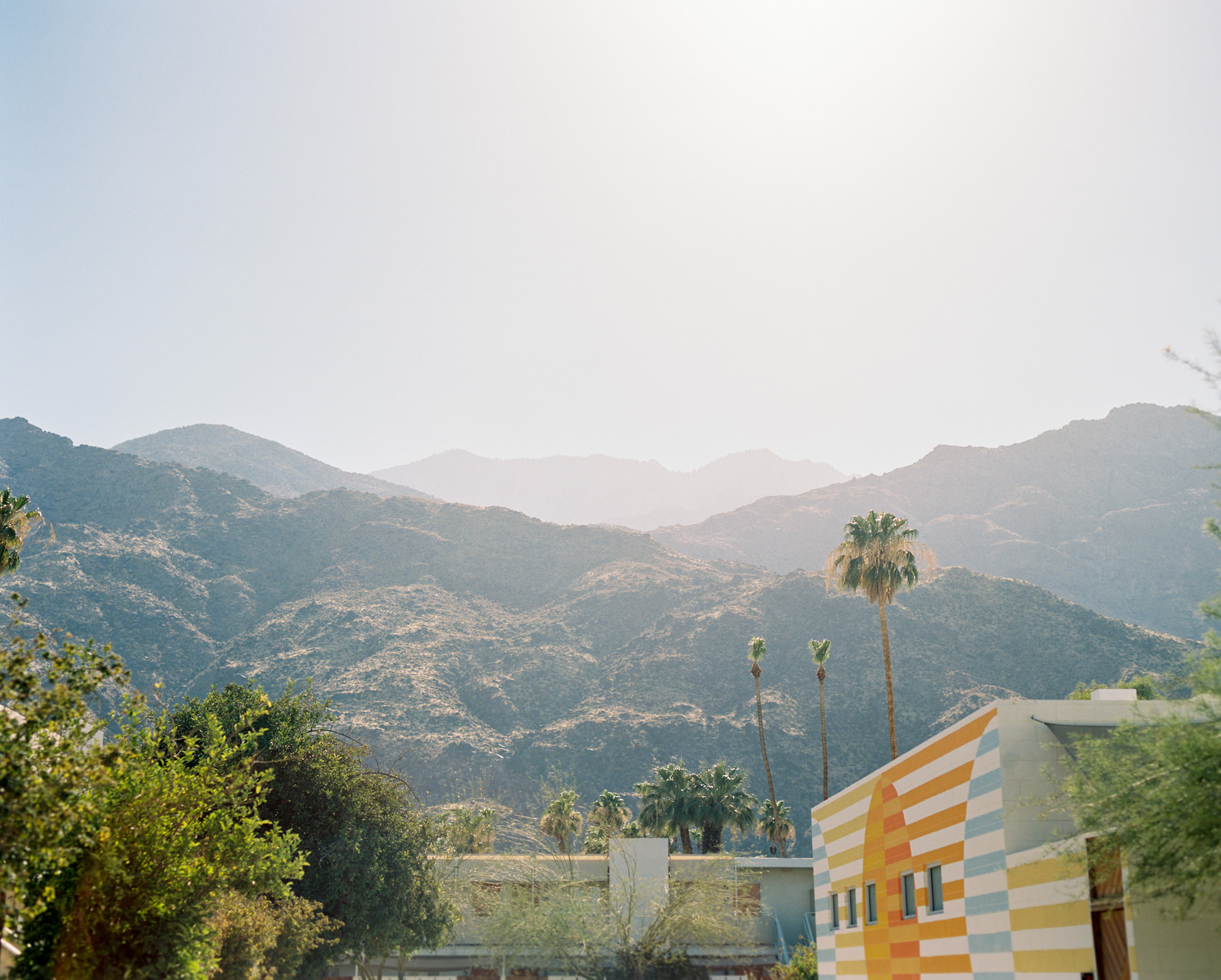 Palm Springs Joshua Tree Travel Film - Diana Ascarrunz Photography-62.jpg