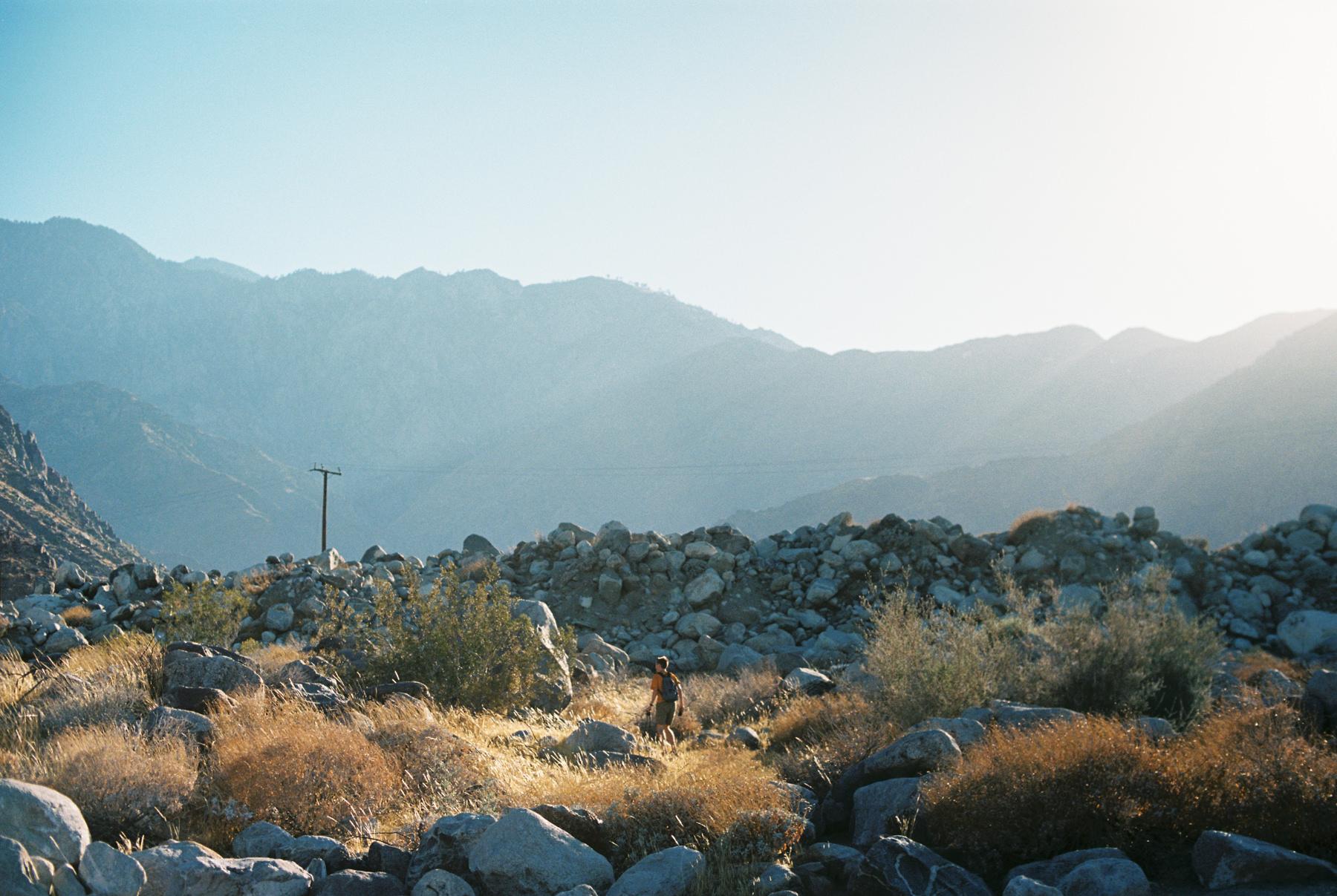 Palm Springs Joshua Tree Travel Film - Diana Ascarrunz Photography-45.jpg