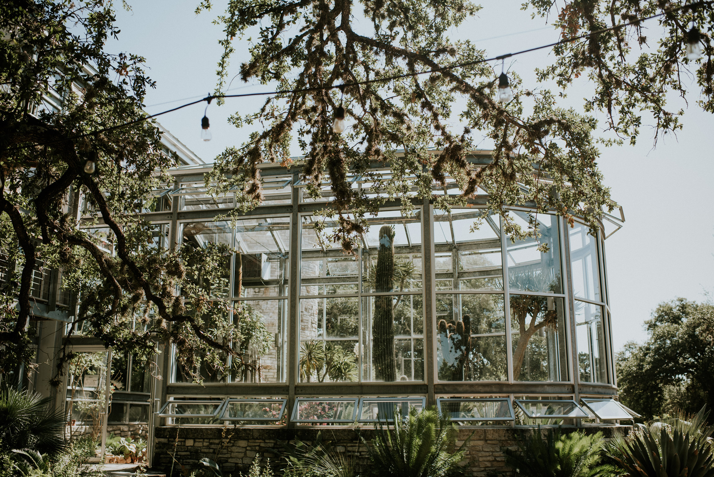 The Greenhouse at Driftwood.