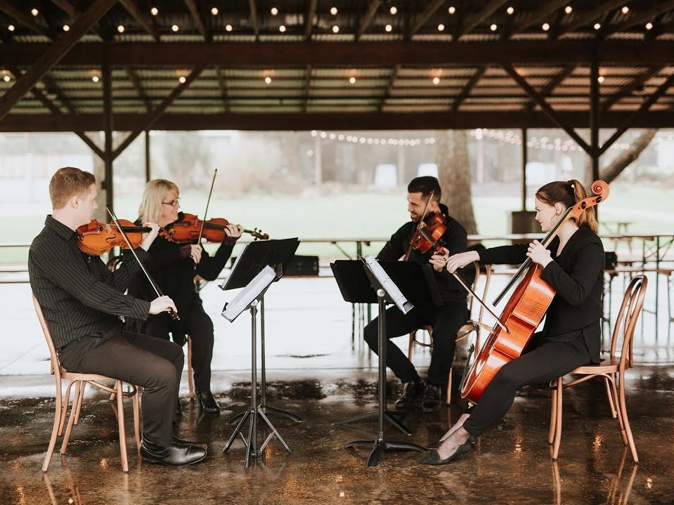 Terra Vista Strings - Austin, Texas