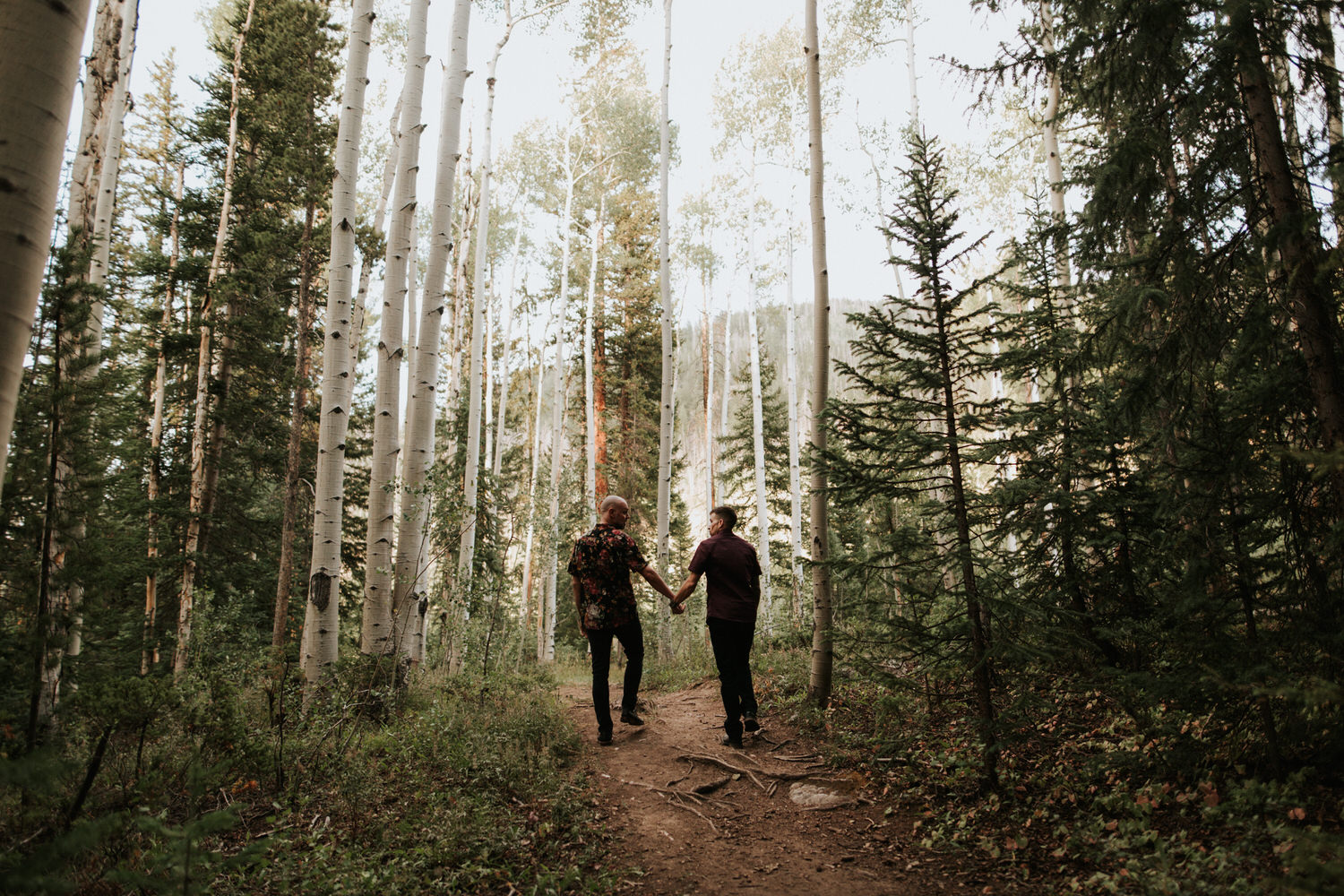 Engaged gay couple in Colorado forest