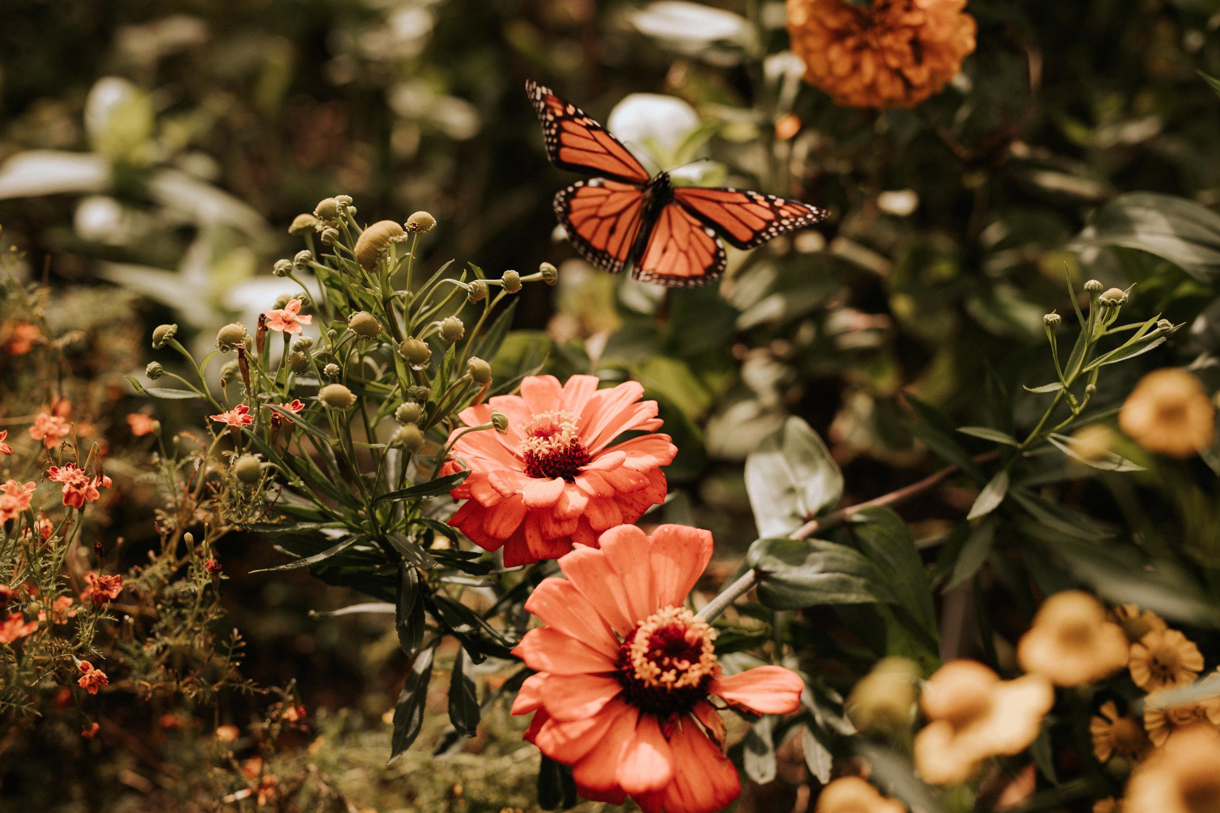 Wedding flowers ethical wedding registry