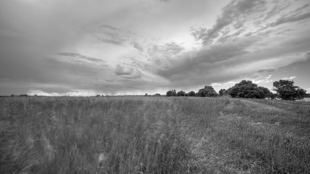 After the Storm - Lac Qui Parle State Park    Canon 5D Mark iii + Canon 17-40mm f4.0L