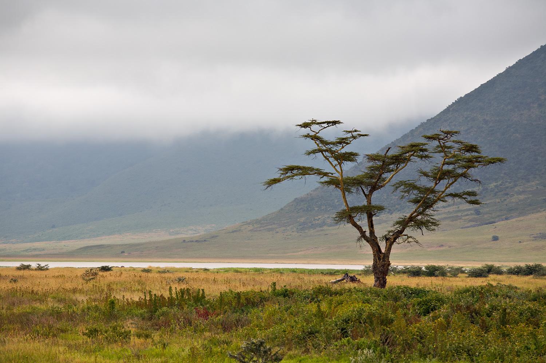 Ngorongoro0007.jpg