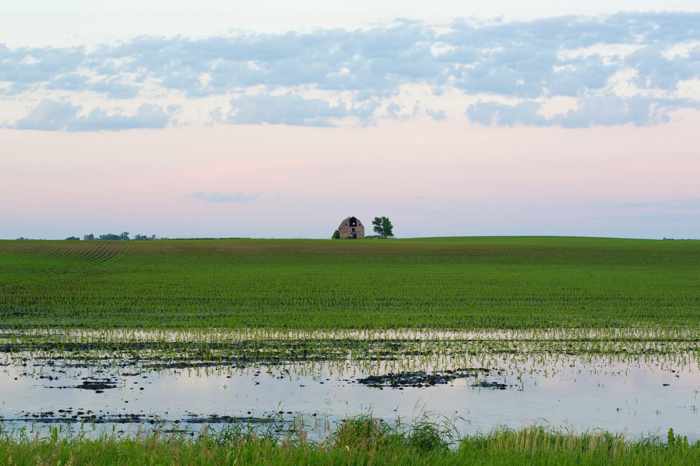 PrairieFarmD036.jpg