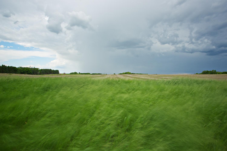 Chippewa State Park - Minnesota    Canon 5D Mark III + Canon 17-40mm f4.0L