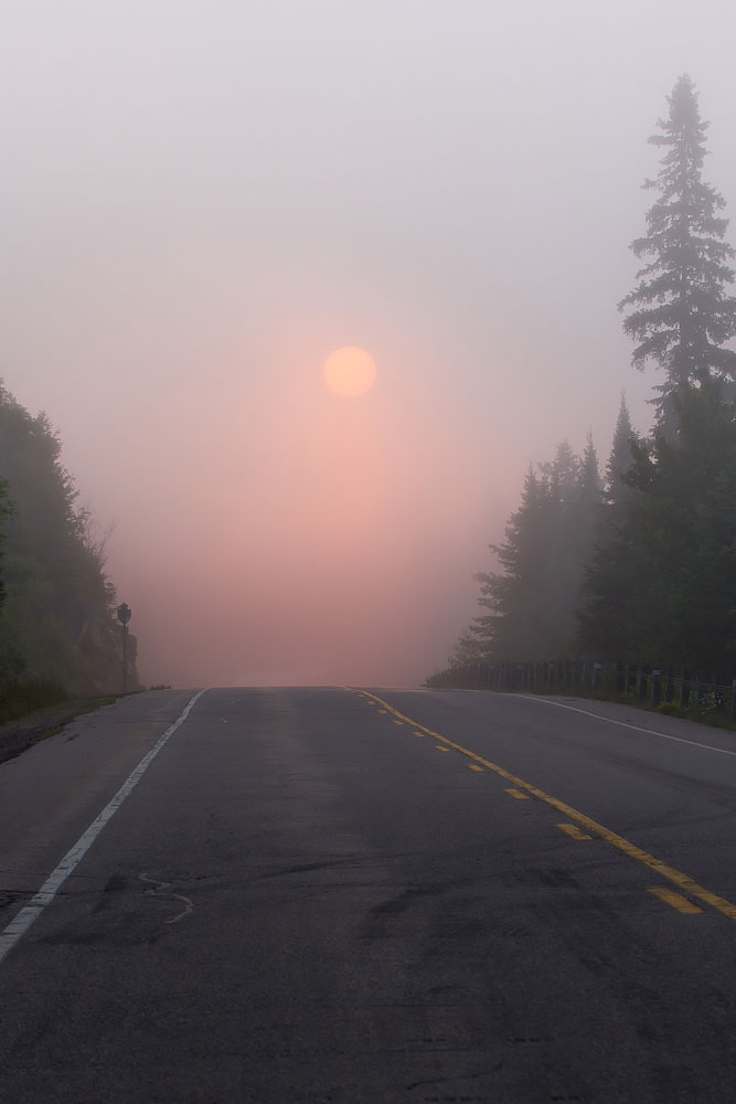 Highway 60 : Algonquin Provincial Park, Ontario  Canon 7D + Canon 100-400mmL f/4.5-5.6
