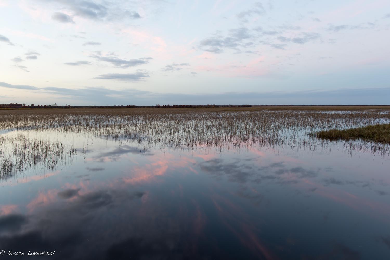 Sunset in Crex Meadows WMA, WI - Nikon D800E & Nikkor 28mm f1.8G AF-S