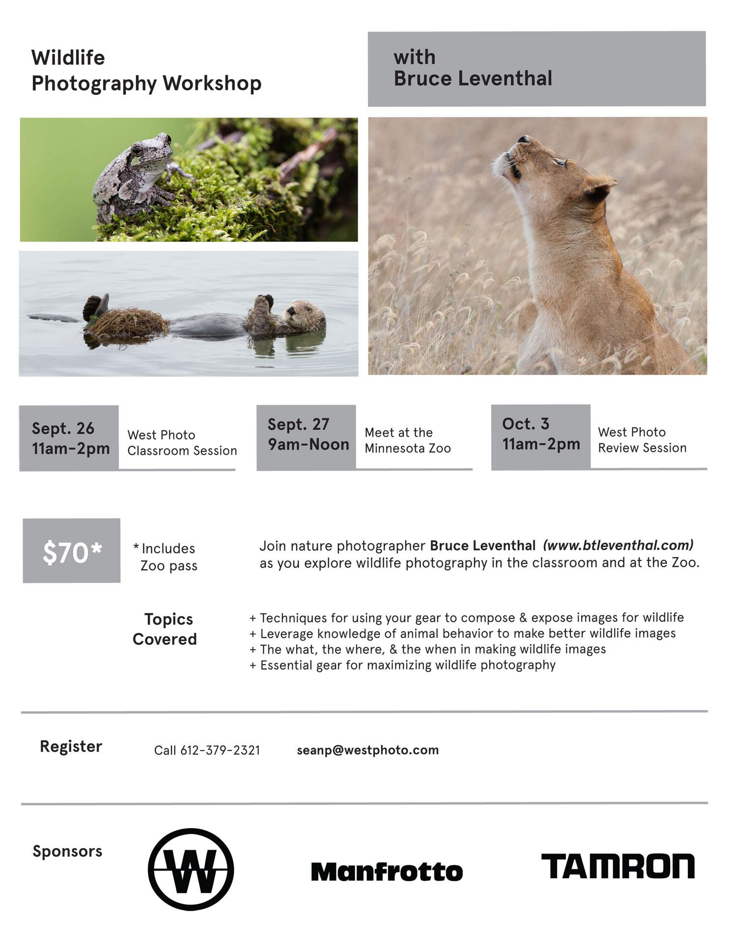 WildlifeWorkshop.jpg