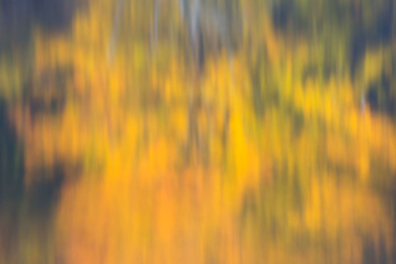 ReflectingFall_BJL5223-Edit.jpg