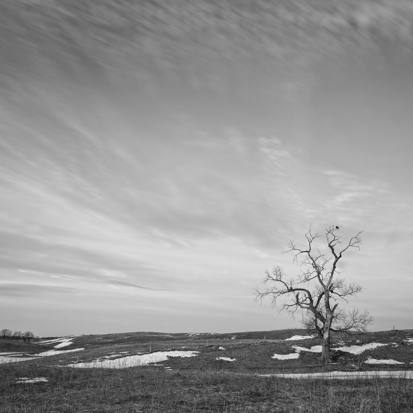 Late Winter, No Snow, Warm Weather  Nikon D800E + Nikon 16-35mm VR