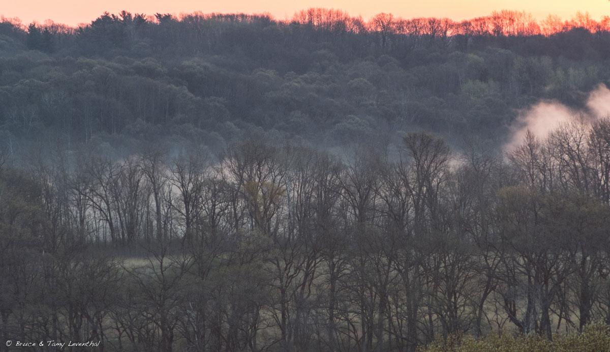 4/23/16 - Foggy Sunrise