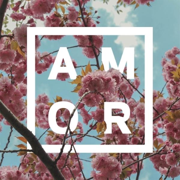 AMOR_flowers.jpg