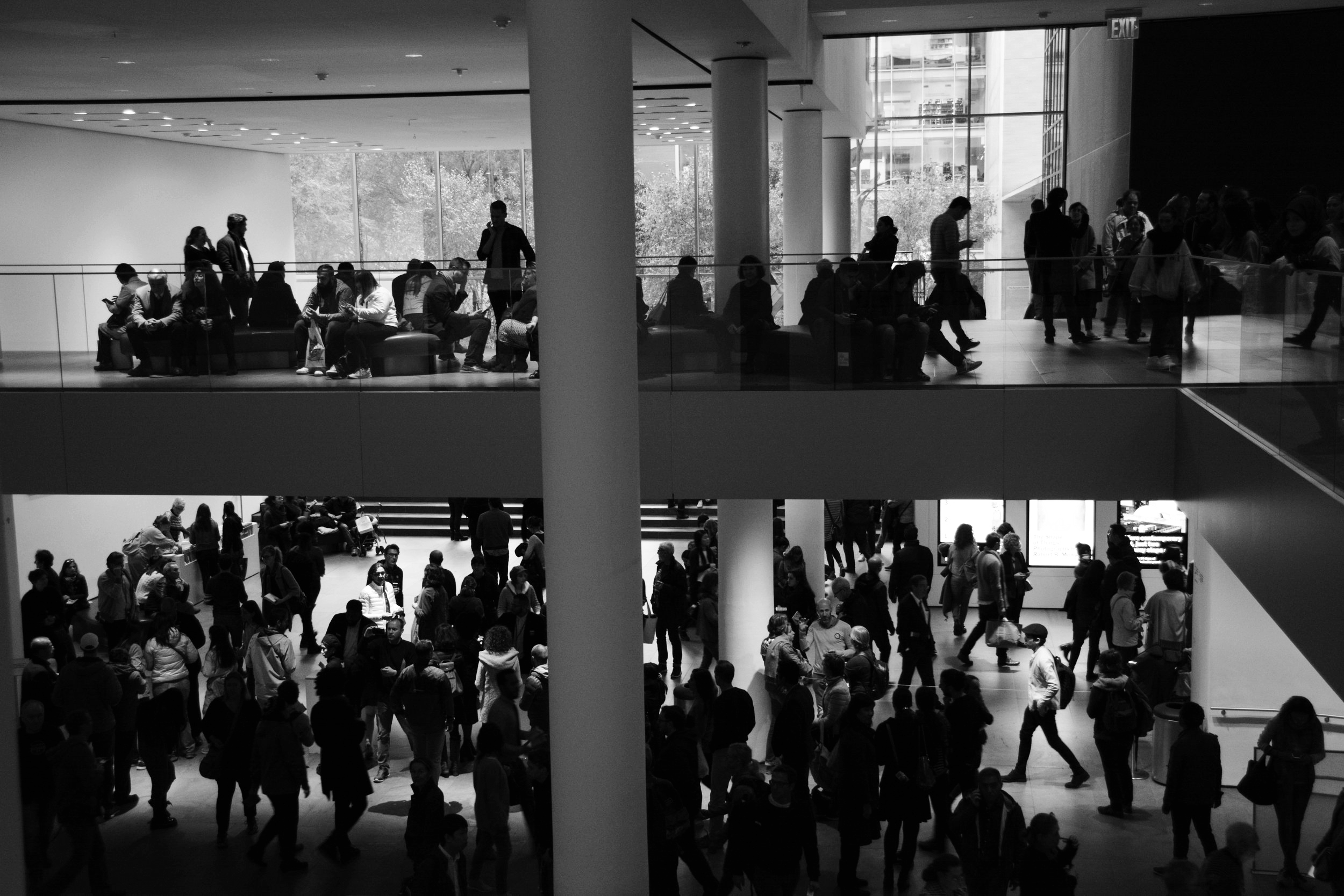 People. Divided. @MOMA, NYC