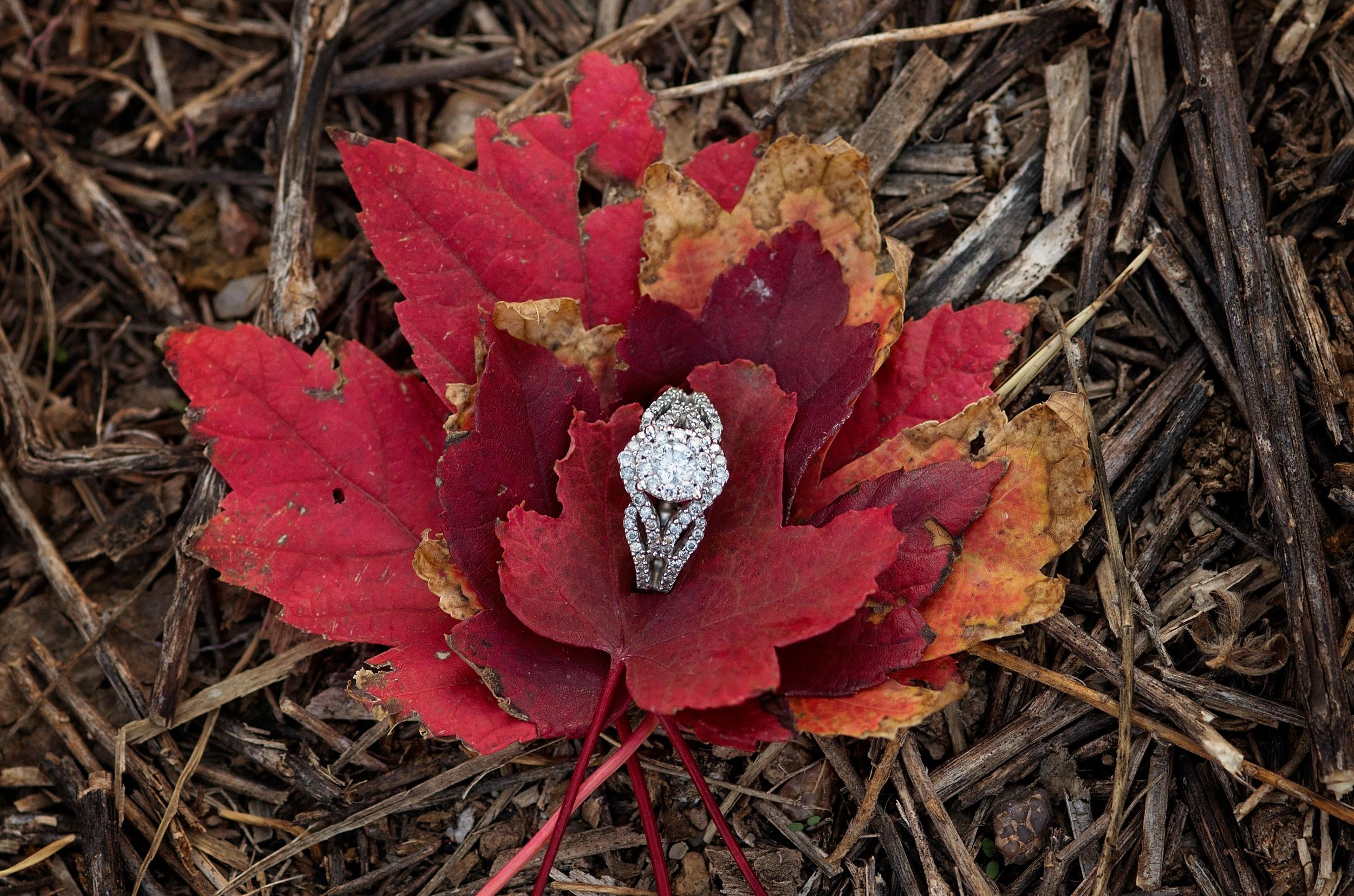 engagement-photography-gardencity-ks-32.jpg