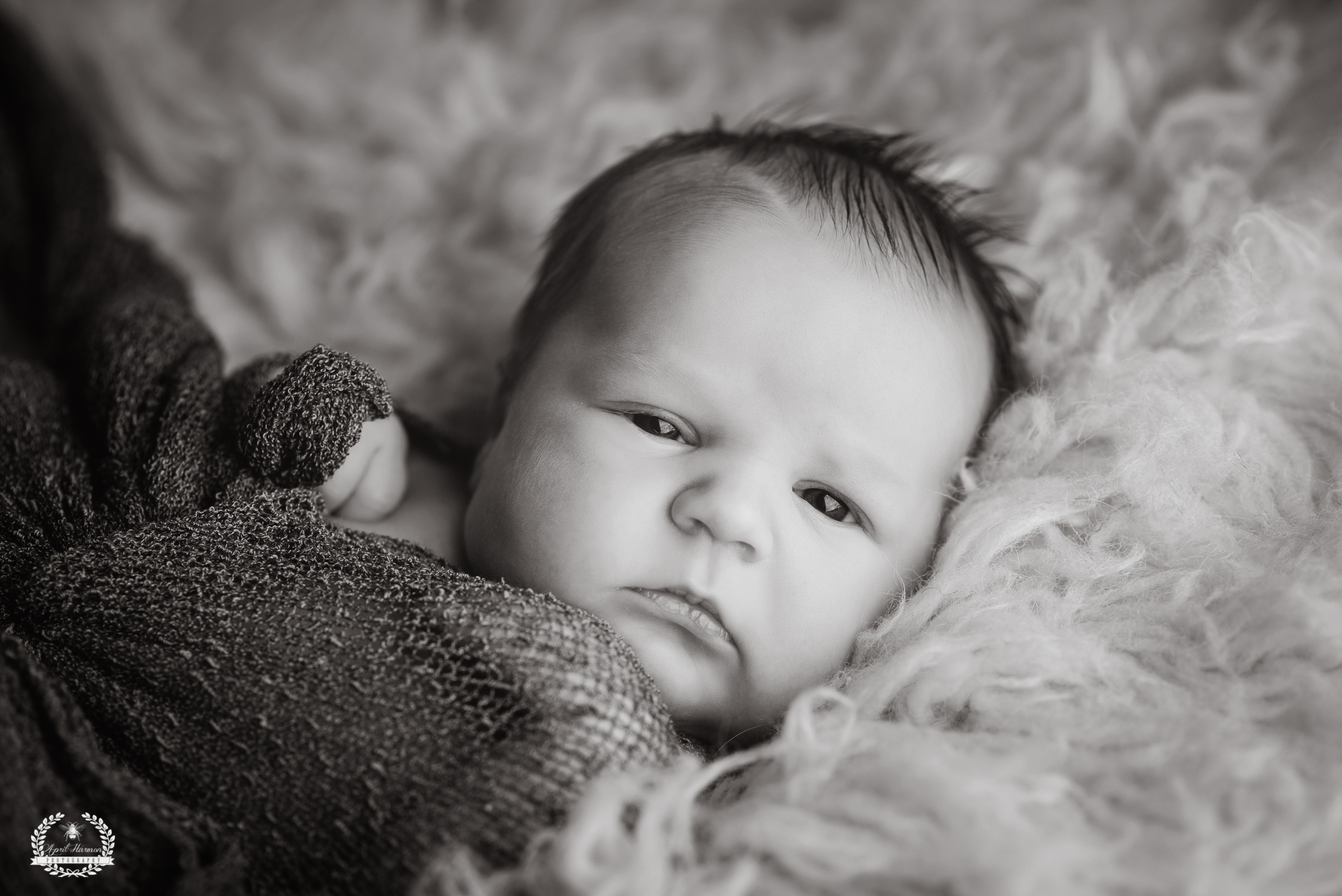 southwest-kansas-newborn-photography10.jpg